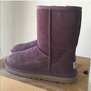 Short classic purple Uggs